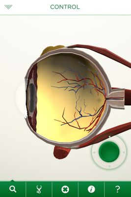 eyedecice1.jpg
