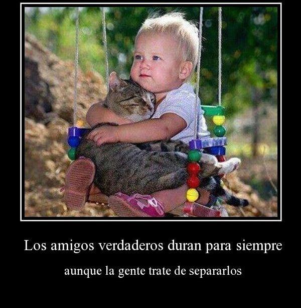 amigos-verdaderos-duran-para-siempre-aunque-la-gente-trate-de-separarlos-desmotivaciones-de-amistad1j.jpg