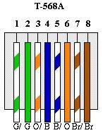 T568A.jpg