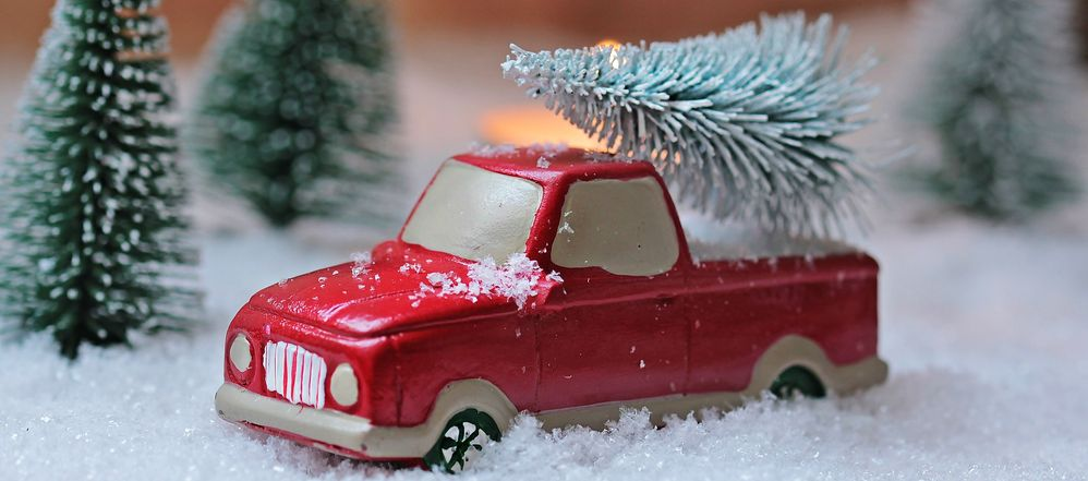 christmas-tree-1856343_1920.jpg
